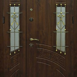 Парадная дверь DR491