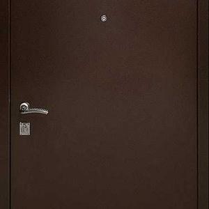 Порошковая дверь DR106